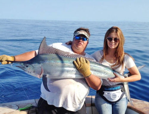 Light Tackle Marlin, Sailfish & Game Fishing