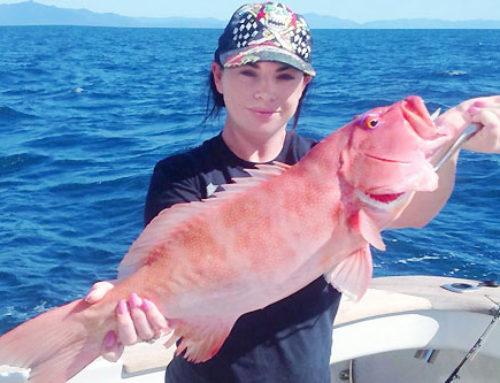 Bottom & Sport Fishing
