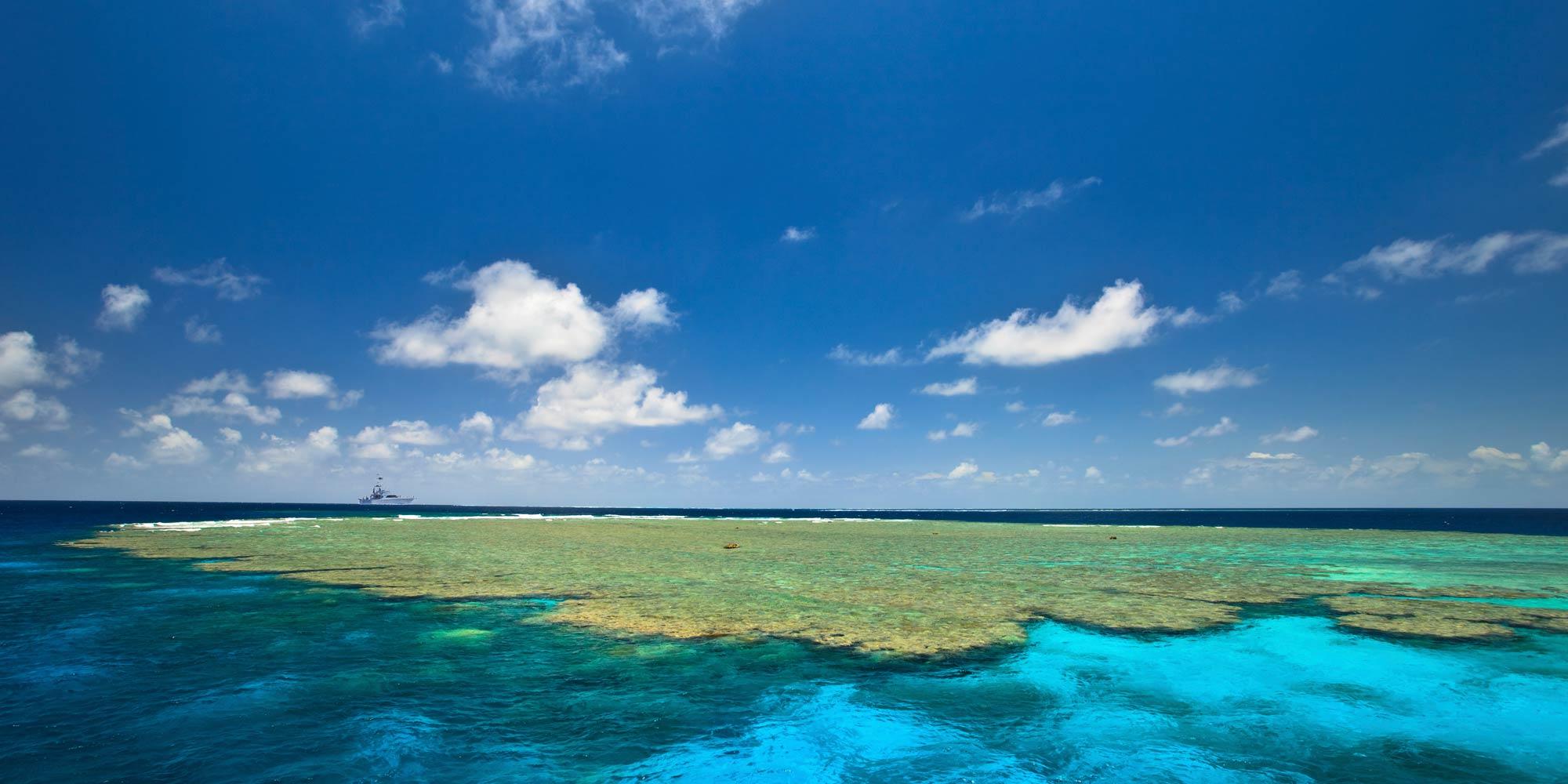 zulu-reef
