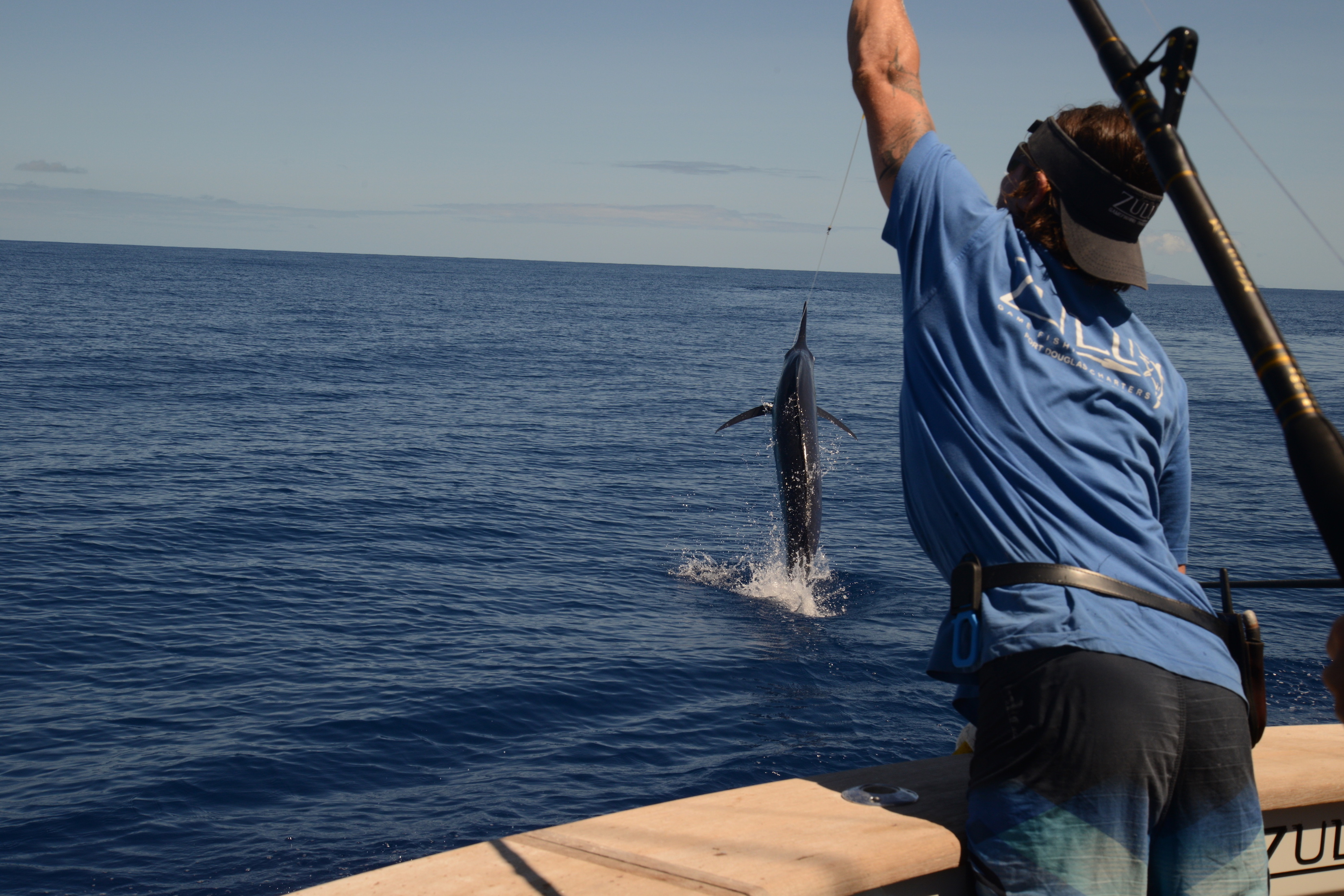 2017 giant black marlin season on the great barrier reef for Fishing games 2017