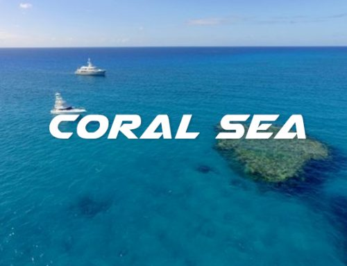 CORAL SEA EXPEDITIONS
